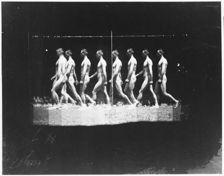 "[Man Walking, ""Stroboscopic"" Photograph]"
