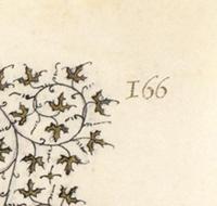 Folio 166r (Detail)