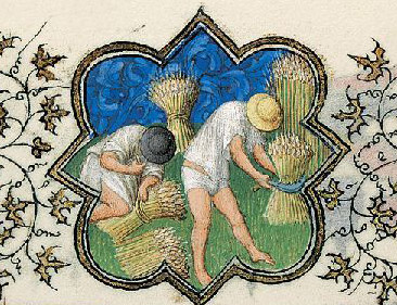 July Activity: Cutting and Binding Wheat