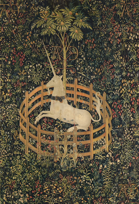 Unicorn in Captivity: Lilium candidum