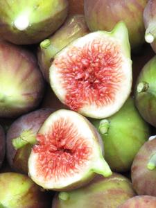 figs_225